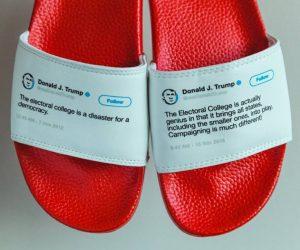 Donald Trump Flip Flops